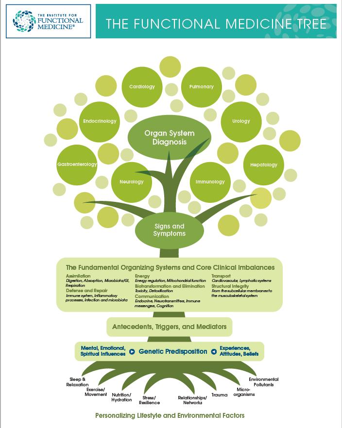 Functional Medicine Tree handout