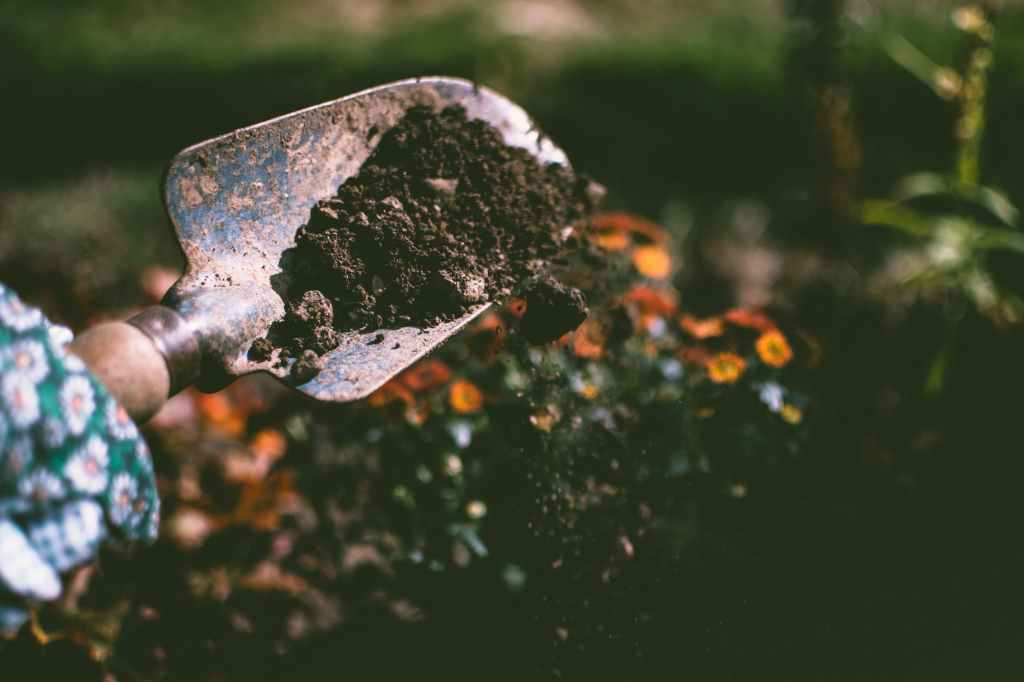 Functional medicine looks deeper into the soil - the internal and external environment of the client.